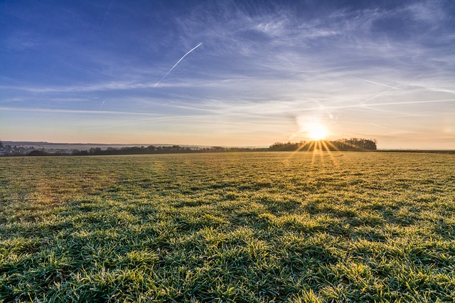 קרקעות חקלאיות להשקעה
