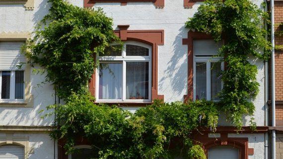 ליווי בתהליך בנייה ירוקה – 3 דגשים חשובים