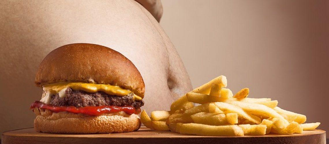 5 גורמים להשמנה